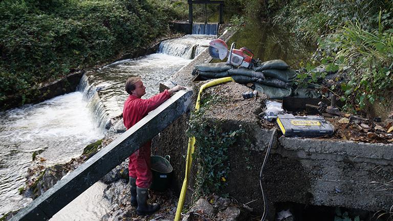 eel pass has been installed at Bidwell Brook in Dartington