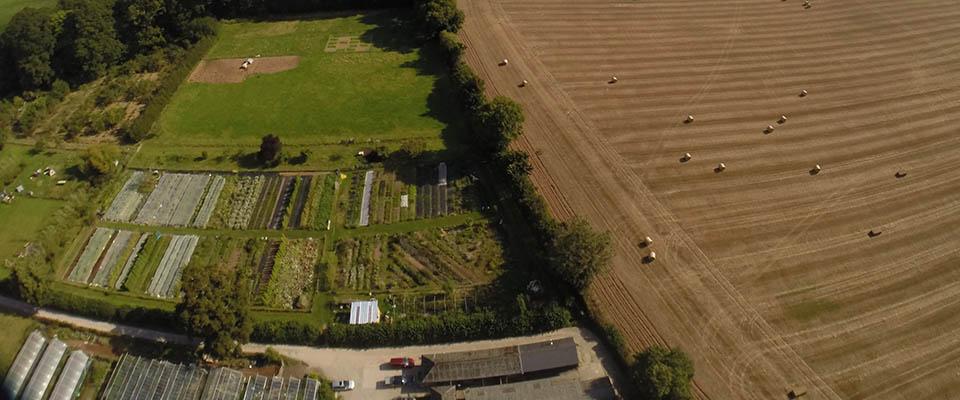 Farming on the estate