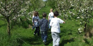 Children-in-Apricot-Orchard