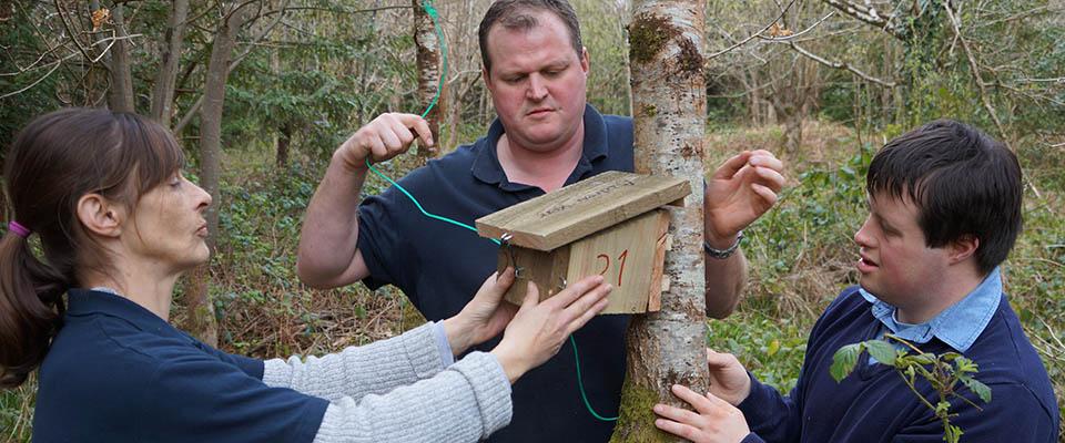 Conservation at Dartington