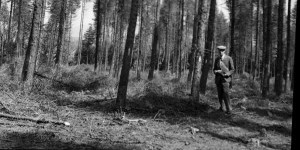 Wilfred Hiley in woodlands in Teign Valley, May 1940. Photo (c) Dartington Archive