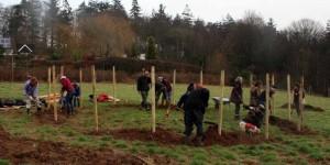 Huxhams Cross Community Orchard