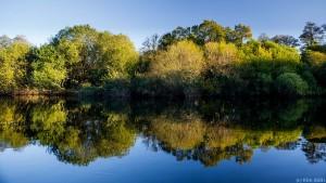 River Dart in Autumn. (c) Kim Aldis