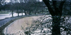Edge of Queen's Marsh, Dartington in flood, captured by Leonard Elmhirst on 30 Feb 1967