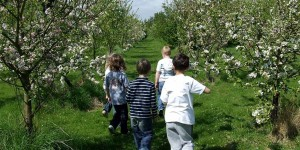 Children in Apricot Orchard. Photo: Marina O'Connell