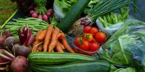 school farm veg