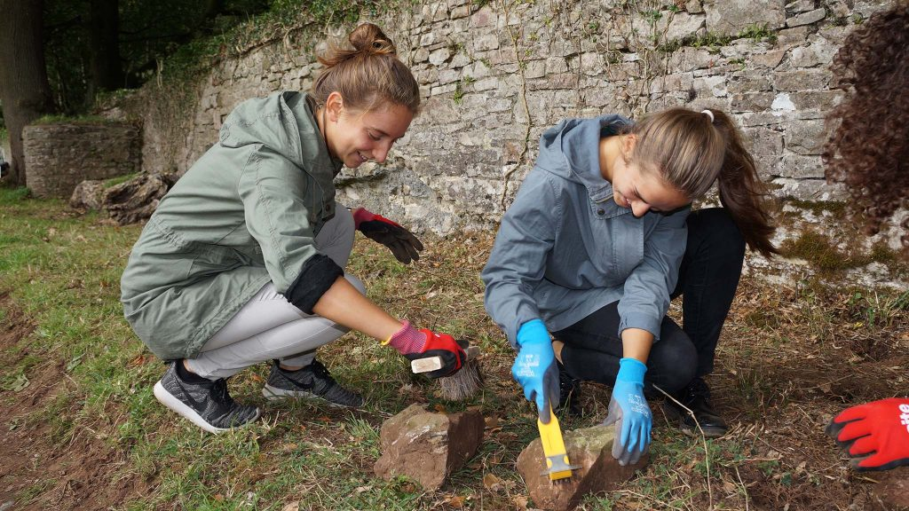 Volunteers from the Language of Totnes School help clear and clean Deer Park wall rubble