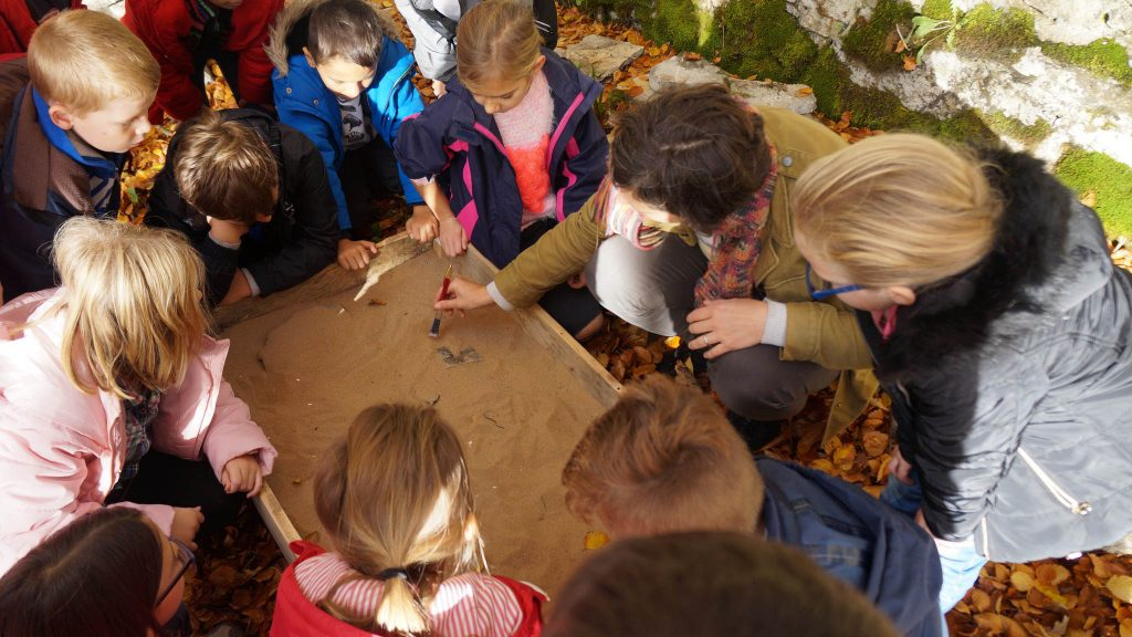 Primary school children get hands-on at a Deer Park educational day