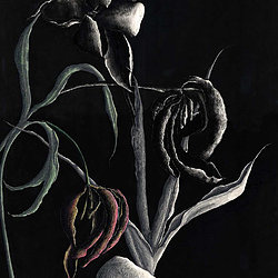 NIcky Stevenson, 'Tulips'