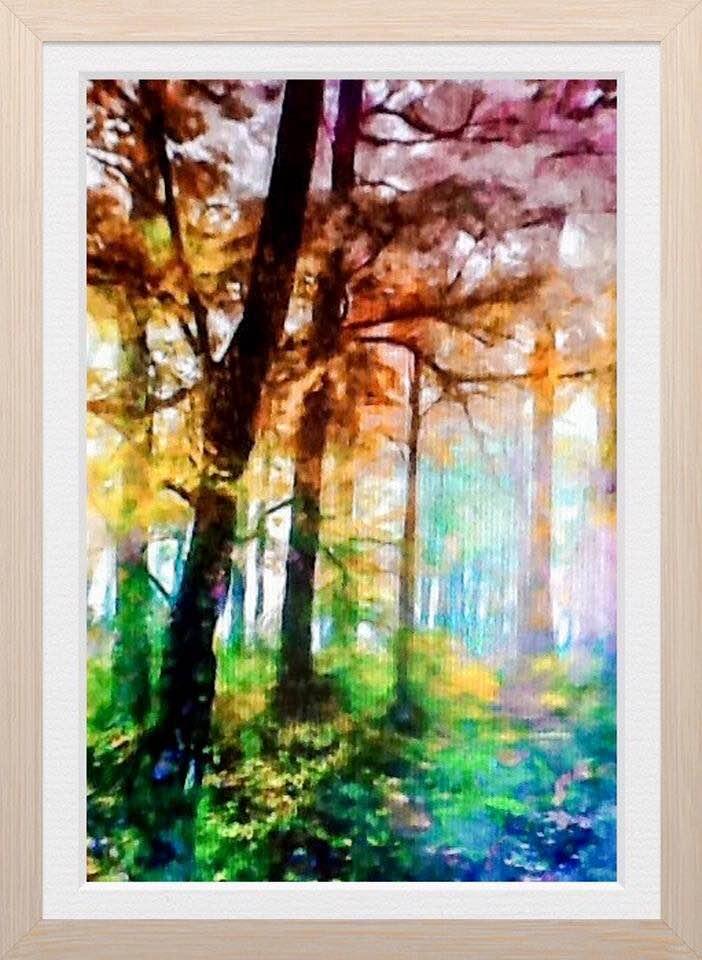 Woodland Walk David Cowell