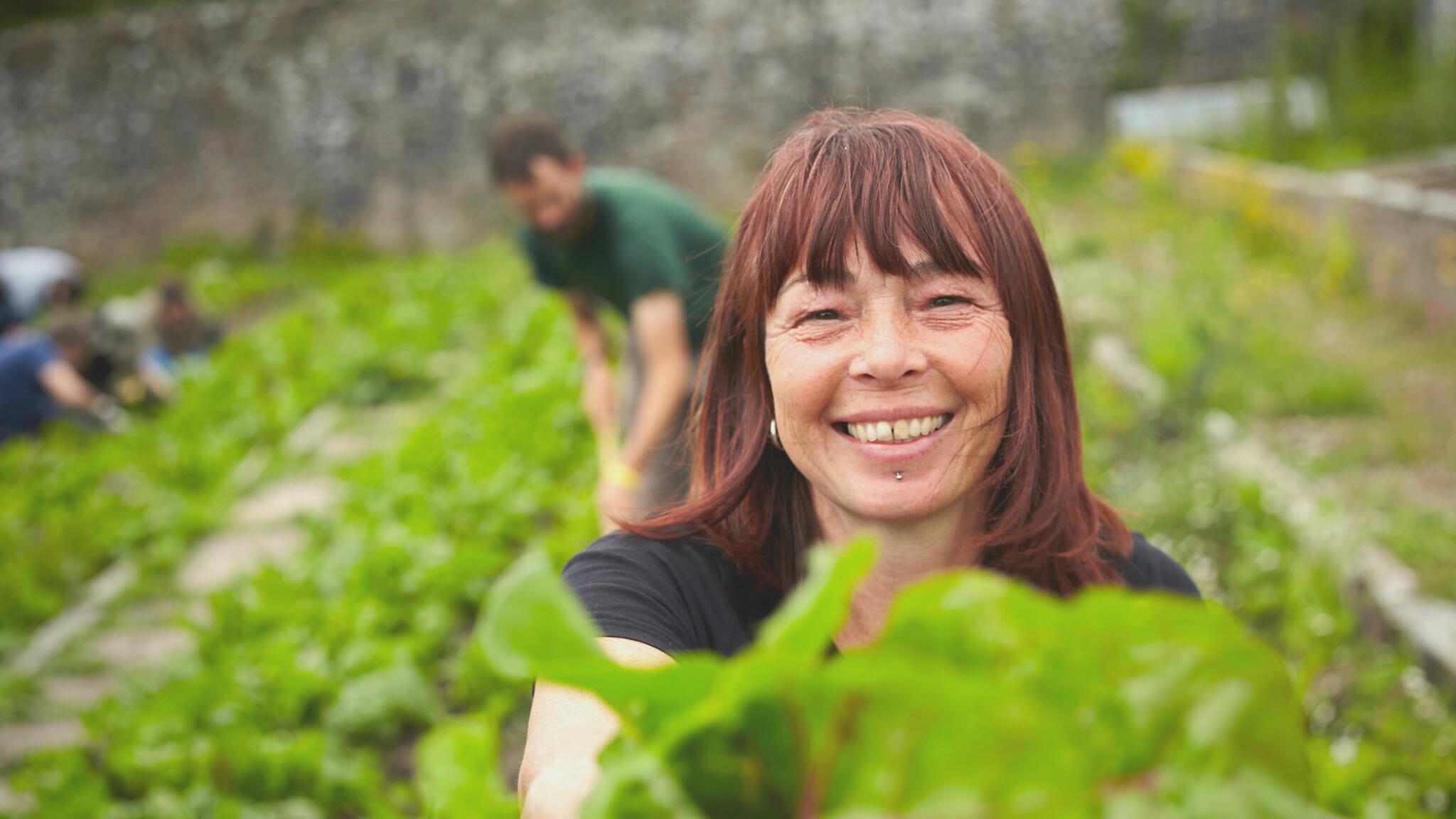 Growing Dartington's historic walled garden