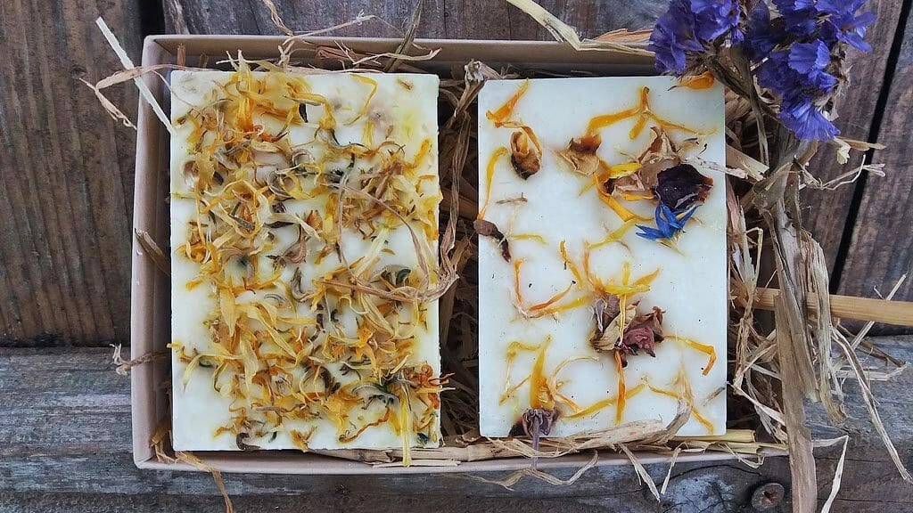 hog and tallow botanical soap course