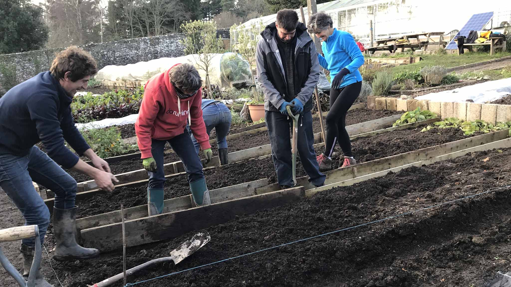 Planting raised beds Walled Garden