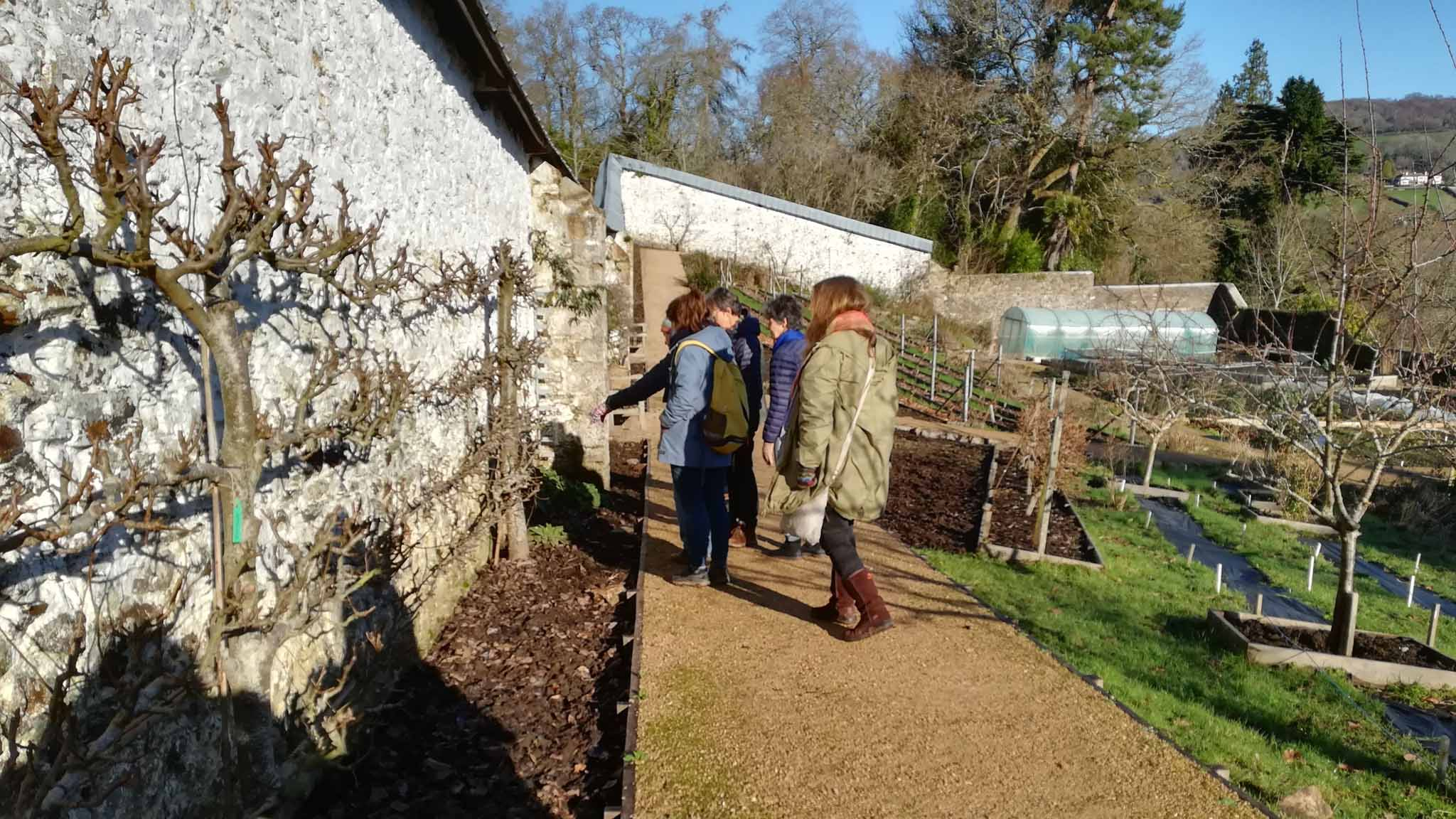 The Walled Garden volunteer team visit Parke in Bovey Tracey