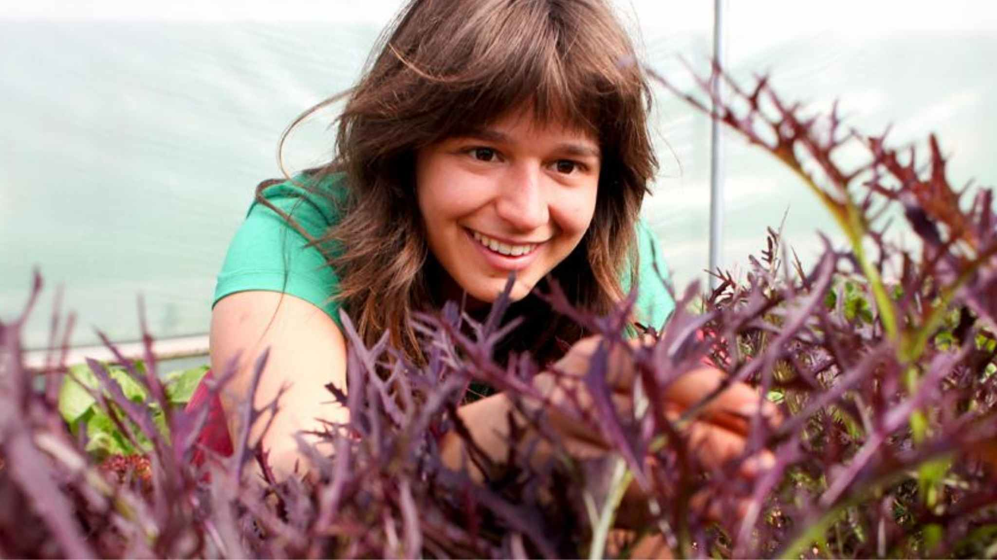 horticulture student at Schumacher College