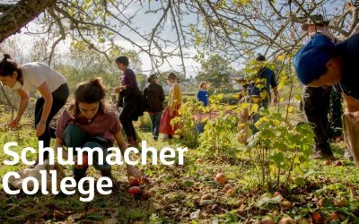 Caroline Aitken: Regenerative farming and the education landscape