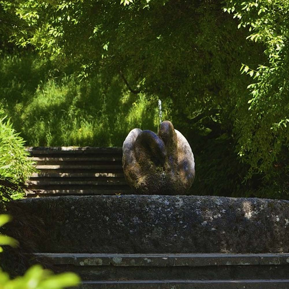 The Swan Fountain