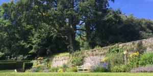 Sunny border in the gardens at Dartington