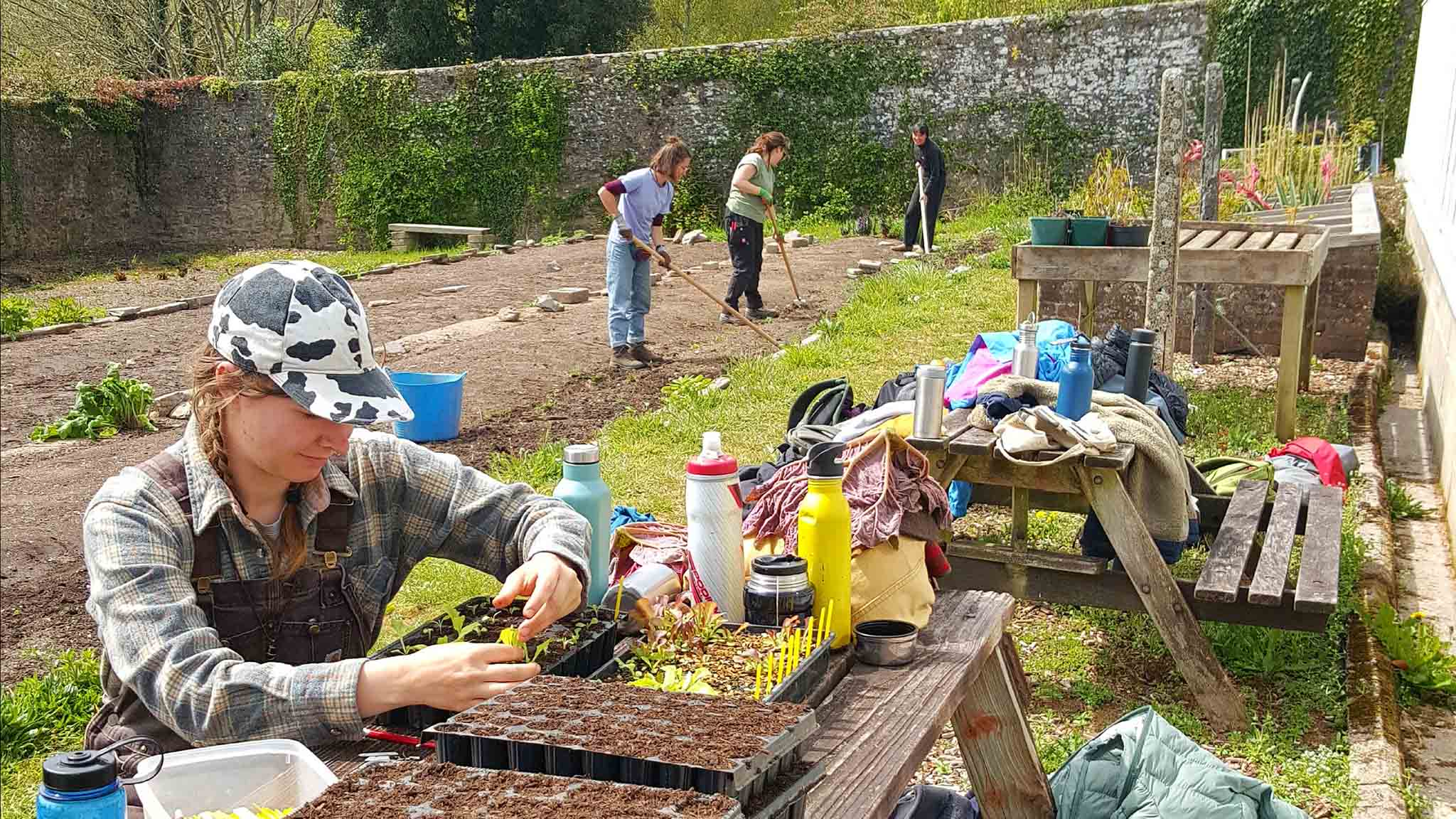 at work in the walled garden